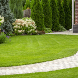 What You Need to Know About Hardscapes for Your Home